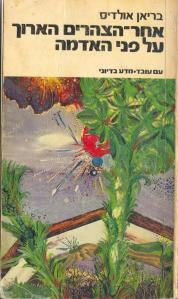 aldis kong afternoon hebrew
