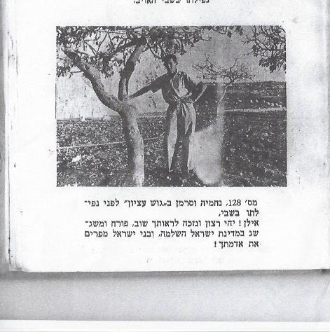 נחמיה וסרמן 0